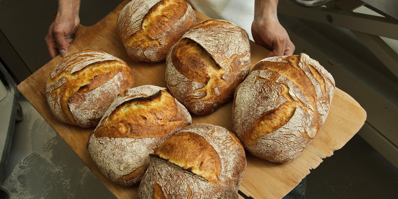 sevenstarsbakary bread